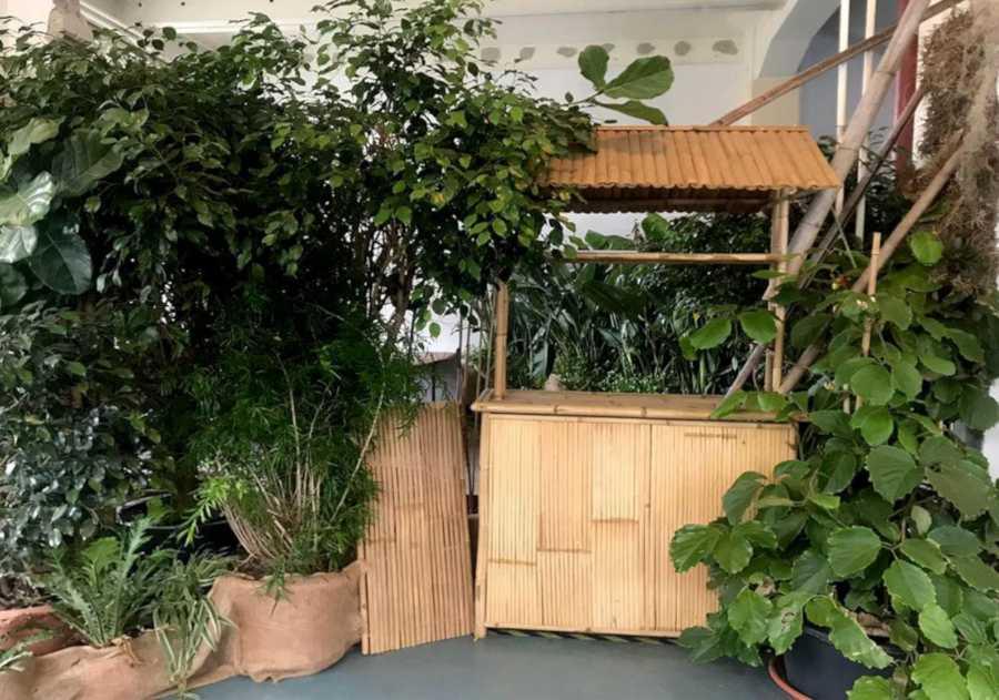 Goerzwerk Wildes Foyer mit vielen Pflanzen