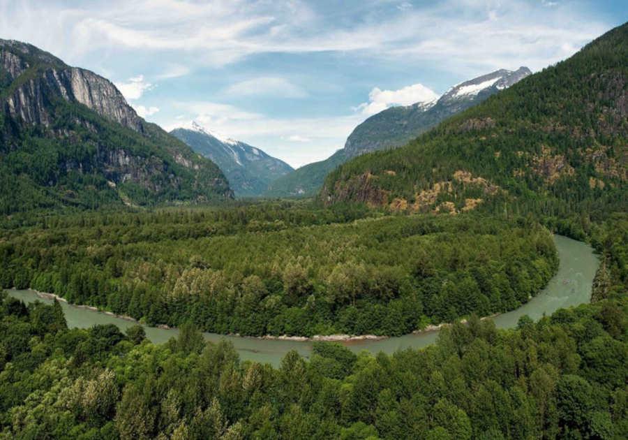 Goerzwerk Regenwald Projekt